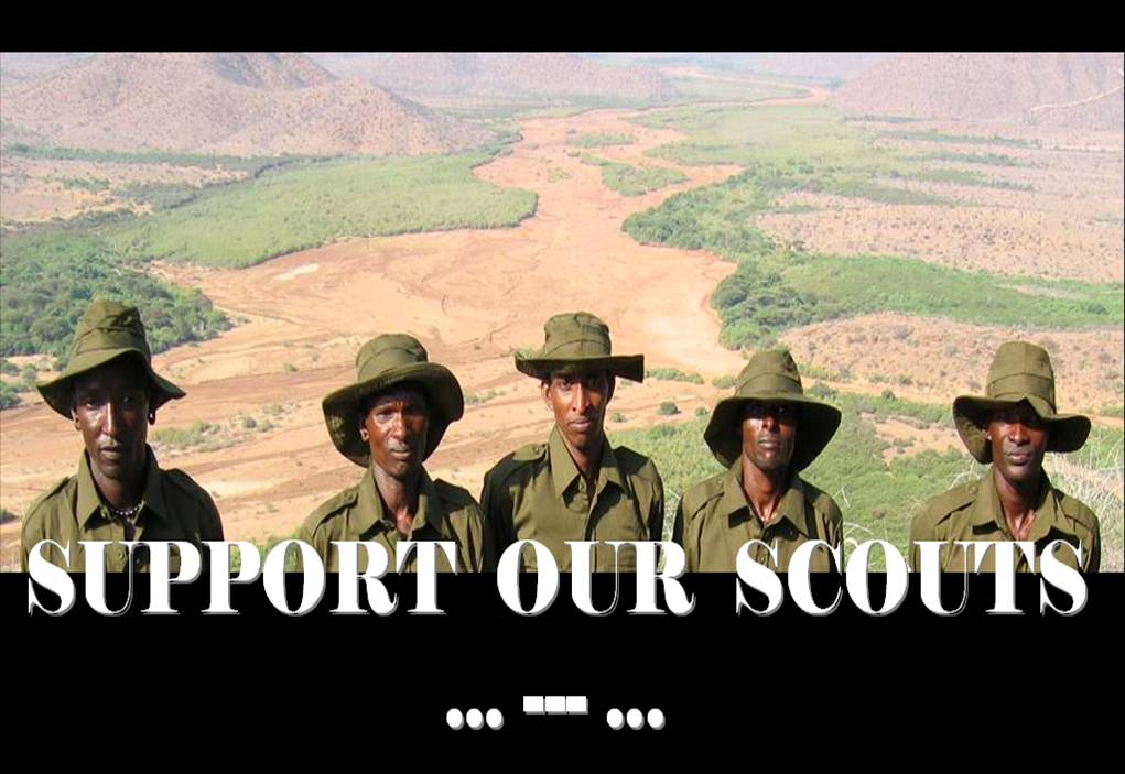 Support Our Scouts