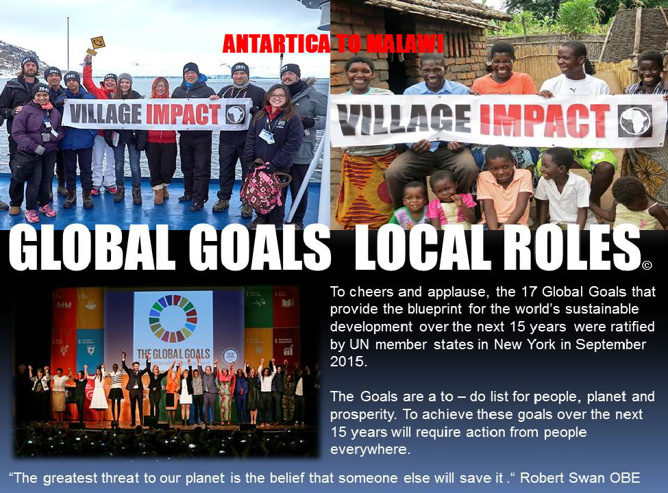 Global Goals Local Roles