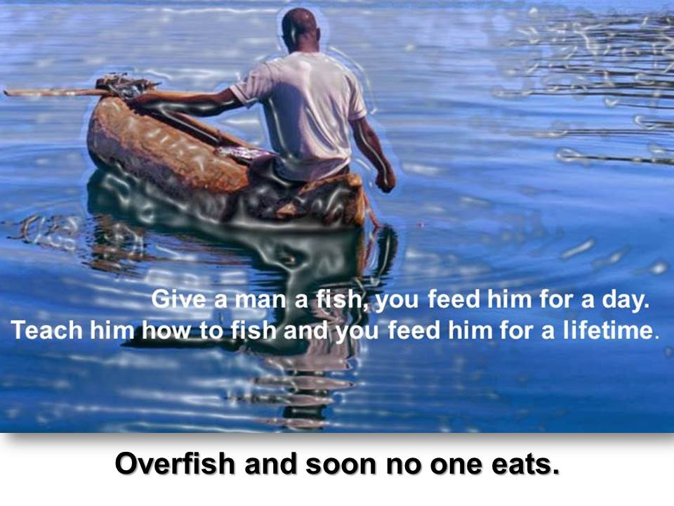 Give a man a fish ...